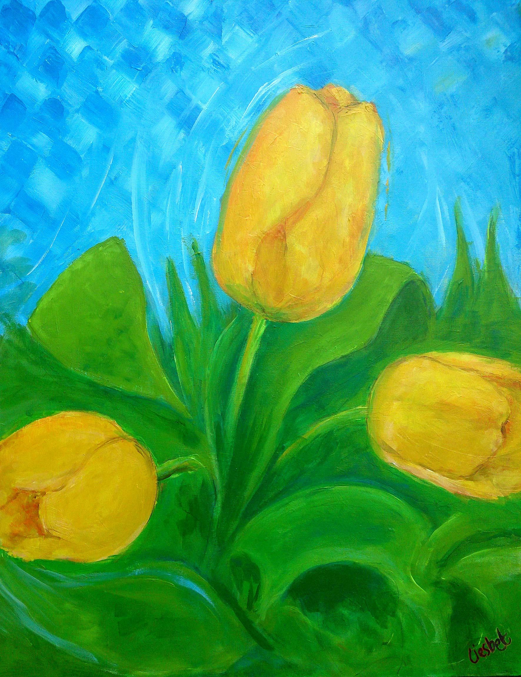 Drie Tulpen 3
